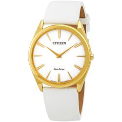 Citizen AR3072-09A