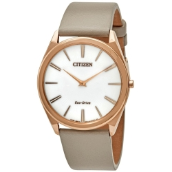 Citizen AR3076-08A