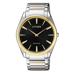 Citizen AR3078-88E