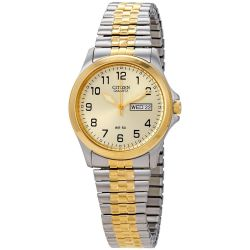 Citizen-BF0574-92P-Mens-Stainless-Gold-Quartz-Watch